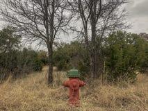 Brandkraan in het land stock foto's