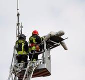 Brandmän under en räddningsaktion övar en men med en attrapp Fotografering för Bildbyråer