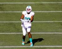 Brandon Gibson Miami Dolphins Stock Images