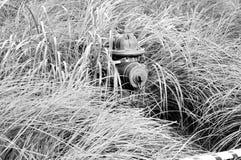 Brandpost i gräset arkivfoto