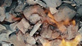 Brandsteenkolen, brandende houtskool als achtergrond