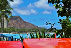 Brandung Waikiki stockfotos