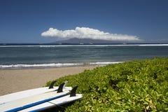 Brandungsbretter, die auf Strand liegen Lahaina, Maui, Hawaii Stockfotos