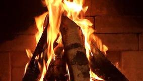 Brandvlam bij zwarte achtergrond Gezoem binnen stock footage