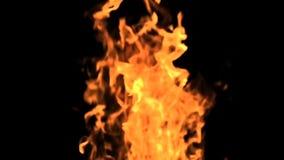 Brandvlam in Langzame Motie 4 stock videobeelden