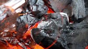 Brandvlammen en houten houtskool stock videobeelden