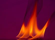 Brandvlammen op een achtergrond Stock Foto