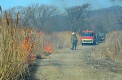 Brandweerauto en brandweerlieden 5 Royalty-vrije Stock Foto's