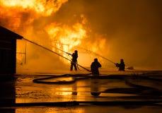 Brandweerlieden op het werk Royalty-vrije Stock Foto's