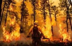 Brandweerman tussen brand en rook royalty-vrije illustratie