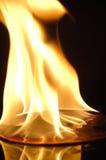 Brandwond Stock Fotografie