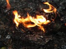 brandwond stock foto's