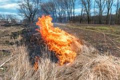 Brandwond Droog Gras royalty-vrije stock foto's