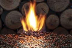 Brandwond houten korrel en boomstammen royalty-vrije stock foto