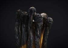 Brandwond uit! royalty-vrije stock fotografie