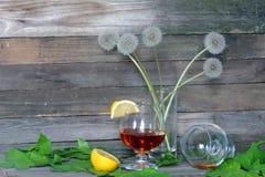 brandy Imagenes de archivo