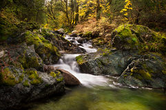 Brandy Creek dans Whiskeytown images libres de droits