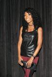Brandy Norwood Stock Photography