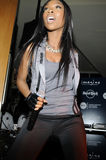 Brandy performing live. Brandy performing live at the Timbaland Shock Value II CD premiere show at Hard Rock Cafe at CityWalk on December 17 2009 Royalty Free Stock Photos
