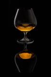 Brandy szkło Obraz Stock