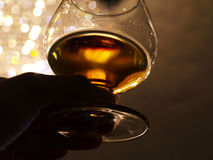 Brandy Tasting Royalty Free Stock Images