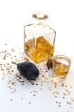 Brandy ungherese della prugna Fotografia Stock Libera da Diritti