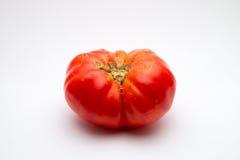 Brandywine蕃茄 免版税库存照片