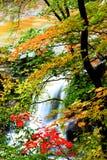 Brandywine Water Falls Royalty Free Stock Photo