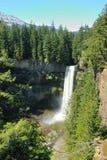 Brandywine waterfall Royalty Free Stock Photography