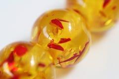 Branelli arancioni Immagine Stock Libera da Diritti