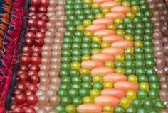 Branelli di colore Fotografie Stock Libere da Diritti