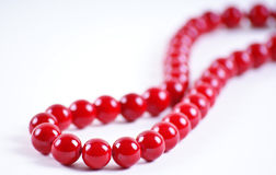 Branelli rossi Immagine Stock