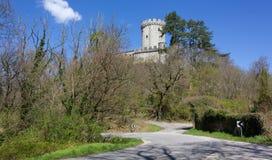 Branik Castle Royalty Free Stock Photo