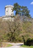 Branik Castle Royalty Free Stock Image