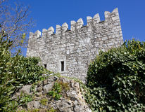 Branik Castle Royalty Free Stock Images