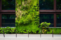 Branly Museum in Paris, France. The green wall Stock Photo