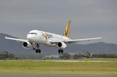 Bransch för flygbuss A320 Royaltyfri Foto