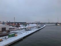 Bransch och transport längs floden Scheldt royaltyfri fotografi