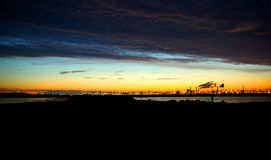 Bransch på horisonten arkivfoton