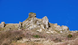 Branscombe Cliffs - Devon Royalty Free Stock Image
