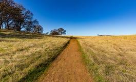 Brant bana som leder upp kullen för att slösa horisonten royaltyfria foton