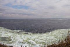 Brant bank av floden i vår blå issky royaltyfri fotografi