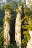 Brant berg royaltyfri bild