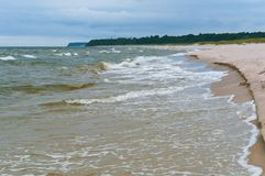 Brant havskust av det baltiska havet, hög kust royaltyfri foto