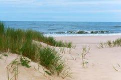 Brant havskust av det baltiska havet, hög kust royaltyfri bild