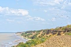 Brant havskust på en solig sommardag arkivbilder