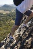 brant klättring Royaltyfria Bilder