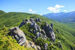 Brant klippaberg Royaltyfri Fotografi