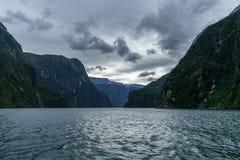 Brant kust i bergen på Milford Sound, fjordland, Nya Zeeland 35 royaltyfria bilder