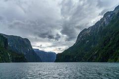 Brant kust i bergen på Milford Sound, fjordland, Nya Zeeland 38 royaltyfria foton